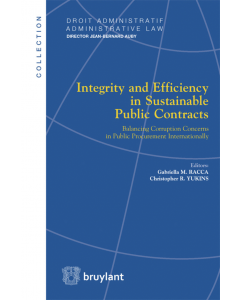 Integrity and Efficiency in Sustainable Public Contracts